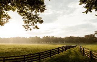 Farmplanning